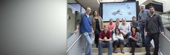Plumbago Microsoft Garage Team Microsoft Garage