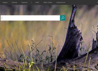 Bing Screenshot Home