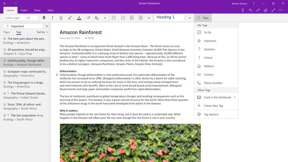 Microsoft Roadmaps Onenote For 2018 Including Killing Off