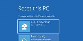 Windows 10 20H1 Archives - WinBuzzer