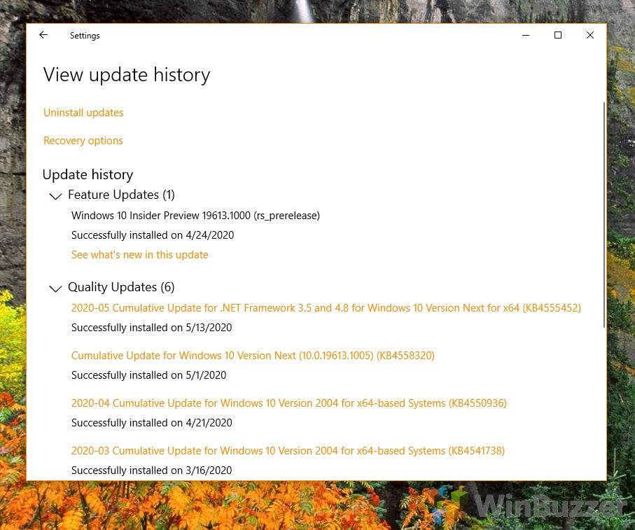 Windows 10 - Settings - Update & Security - Windows Update - View Update History
