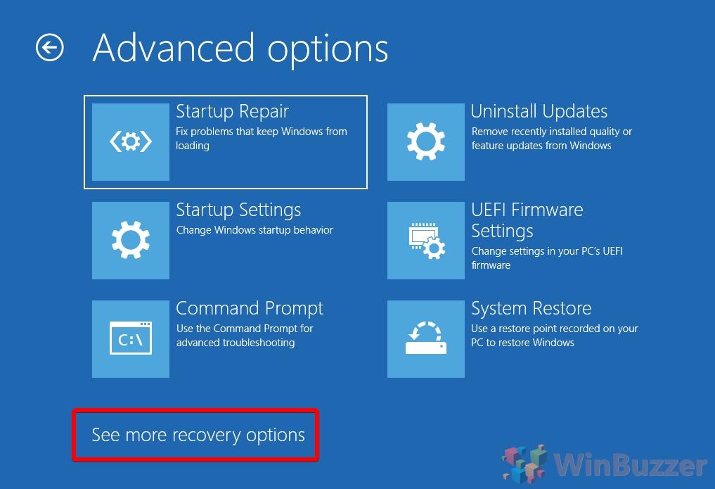 Windows 10 - Advanced Startup Options - Troubleshoot - Advanced options