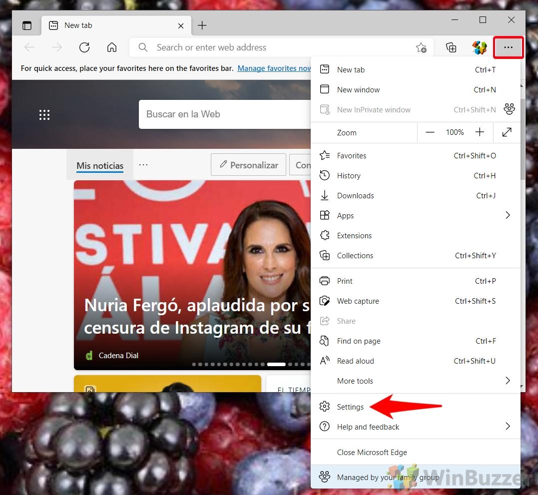 Windows 10 - Microsoft Edge - Open Settings