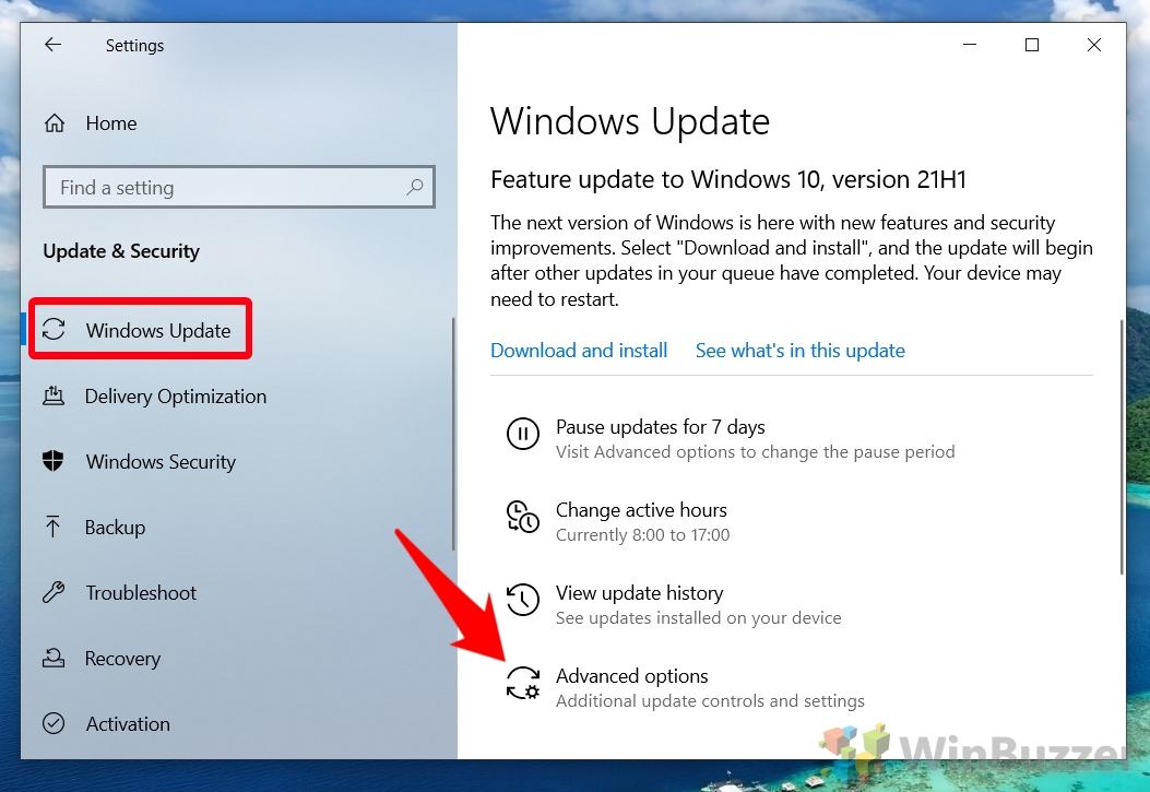 Windows 10 - Settings - Update & Security - Windows Update - Open Advanced Options