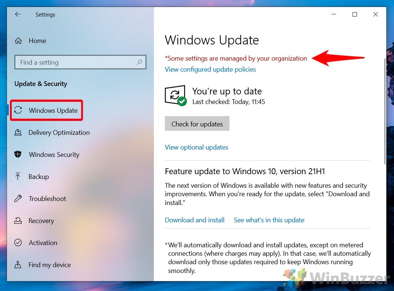 Windows 10 - Settings - Update & Security - Windows Update - Result