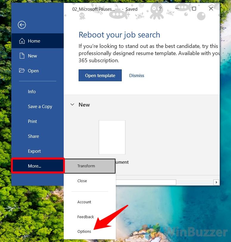 Windows 10 - Word - File - Options